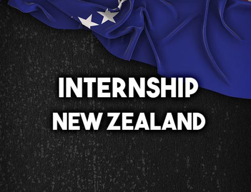 Internship in New Zealand
